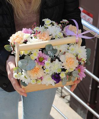 Цветы в ящике «Негрони»