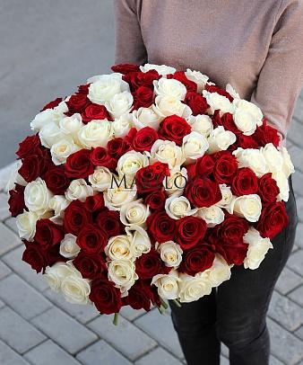 Букет 101 красно-белая роза