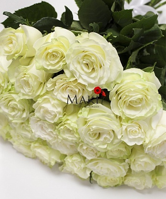 35 белых роз Premium